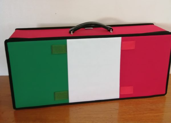 Italian Flag case