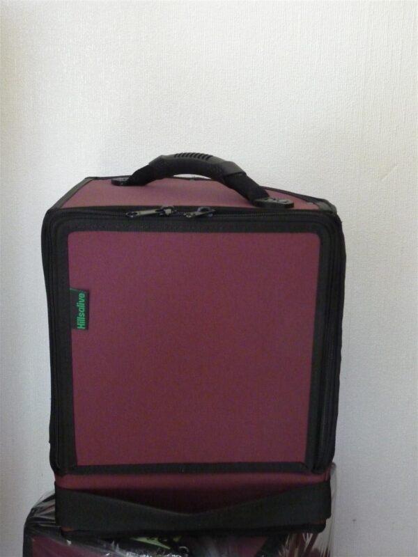 Morgan Three Wheeler Luggage