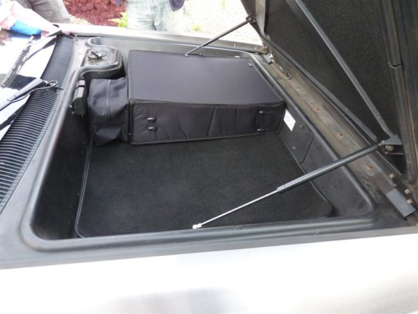 DeLorean Luggage - front