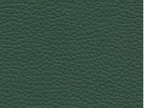 Faux Leather: Dark Green