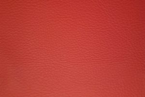 Eco Leather: Red